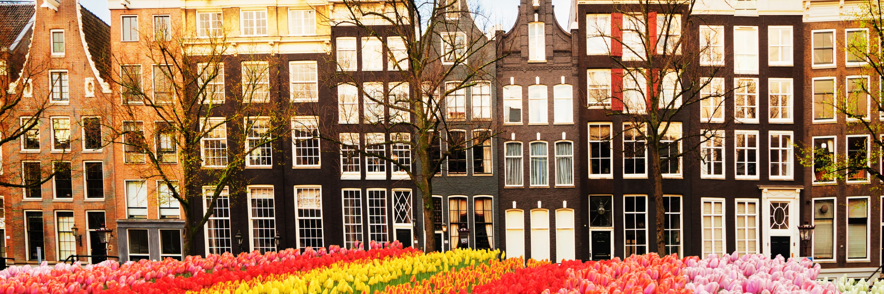 Tulip Time Cruise with 3 Nights in Paris for Beer Enthusiasts