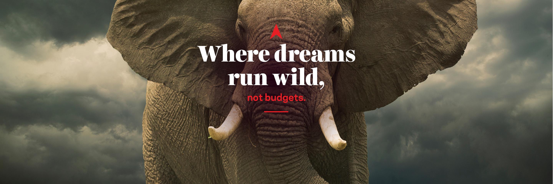 Header Where dreams run wild not budgets