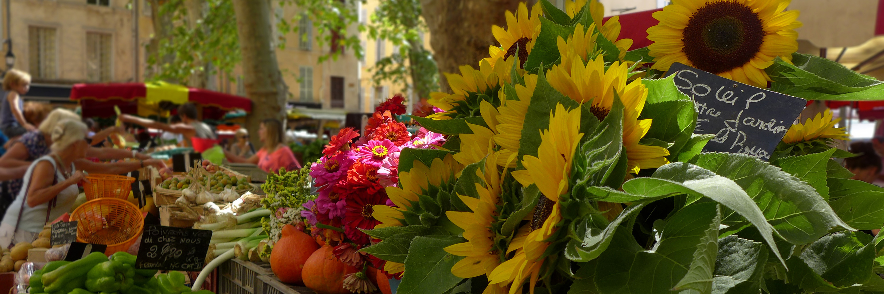 Burgundy and Provence with 2 nights in Paris, 2 nights in Aix-en-Provence & 2 nights in Nice