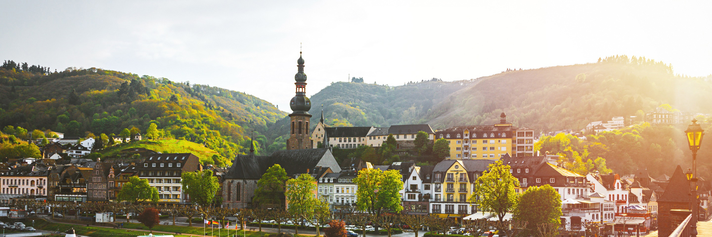 The Rhine & Moselle: Canals, Vineyards & Castles with   1 Night in Amsterdam for Wine Lovers