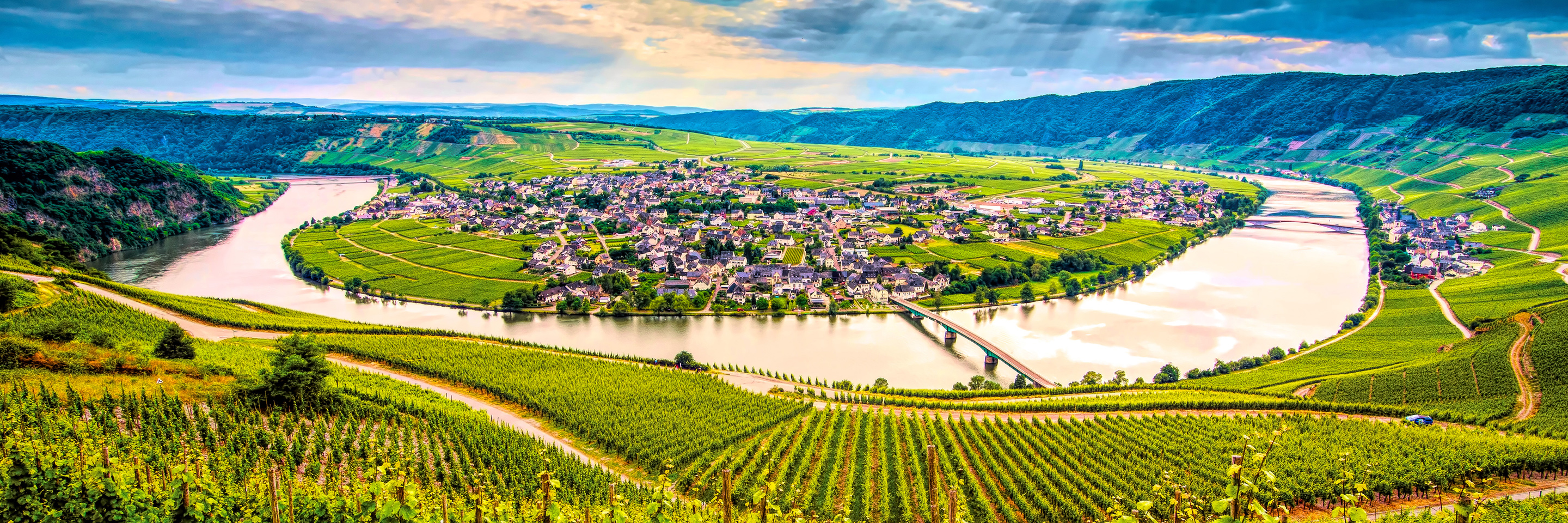 The Rhine & Moselle: Canals, Vineyards & Castles (Southbound)