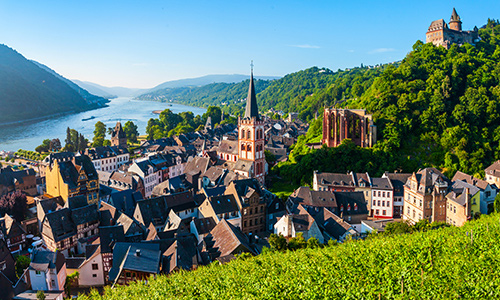 rhine-castles-canals-vineyards.jpg
