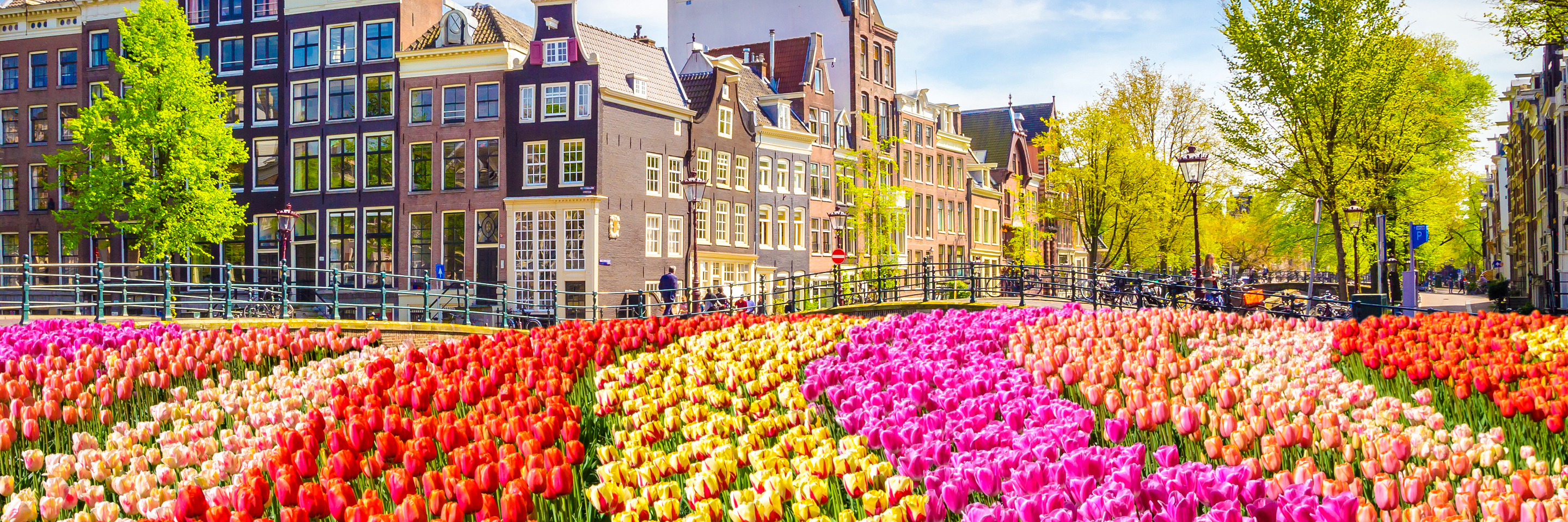 Tulip Time Cruise with 1 Night in Amsterdam