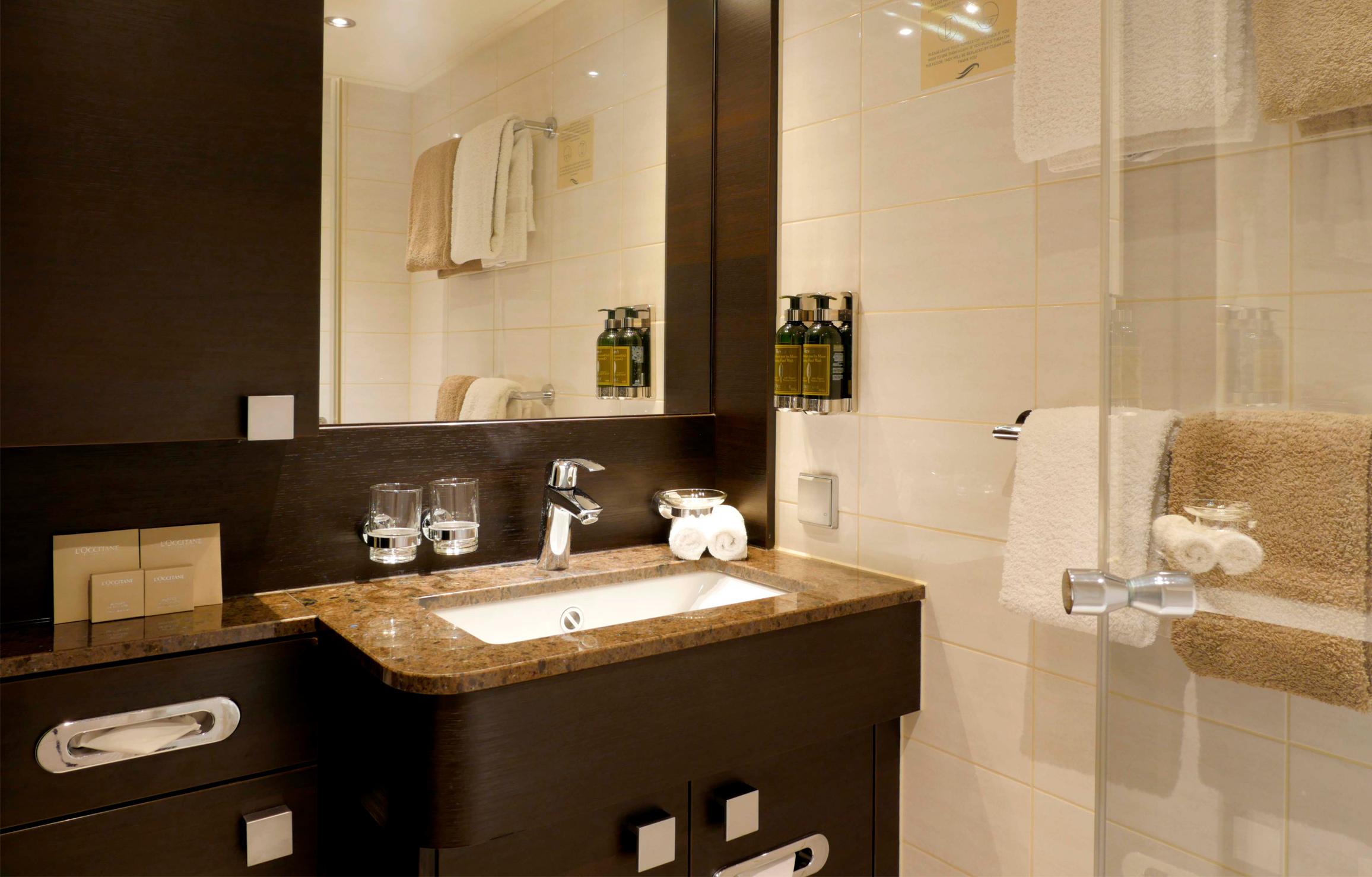 Deluxe Stateroom Bathroom