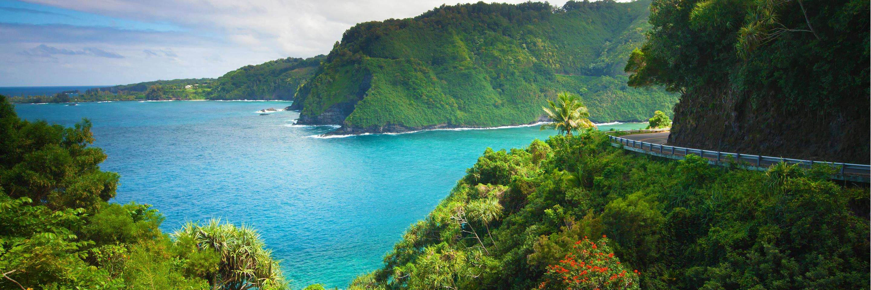 Explore Hawaii with Cosmos