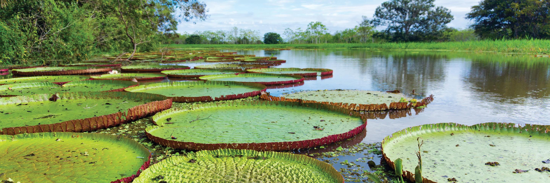 Peru Splendors with Peru's Amazon & Galápagos Cruise