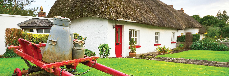 Irish Discovery