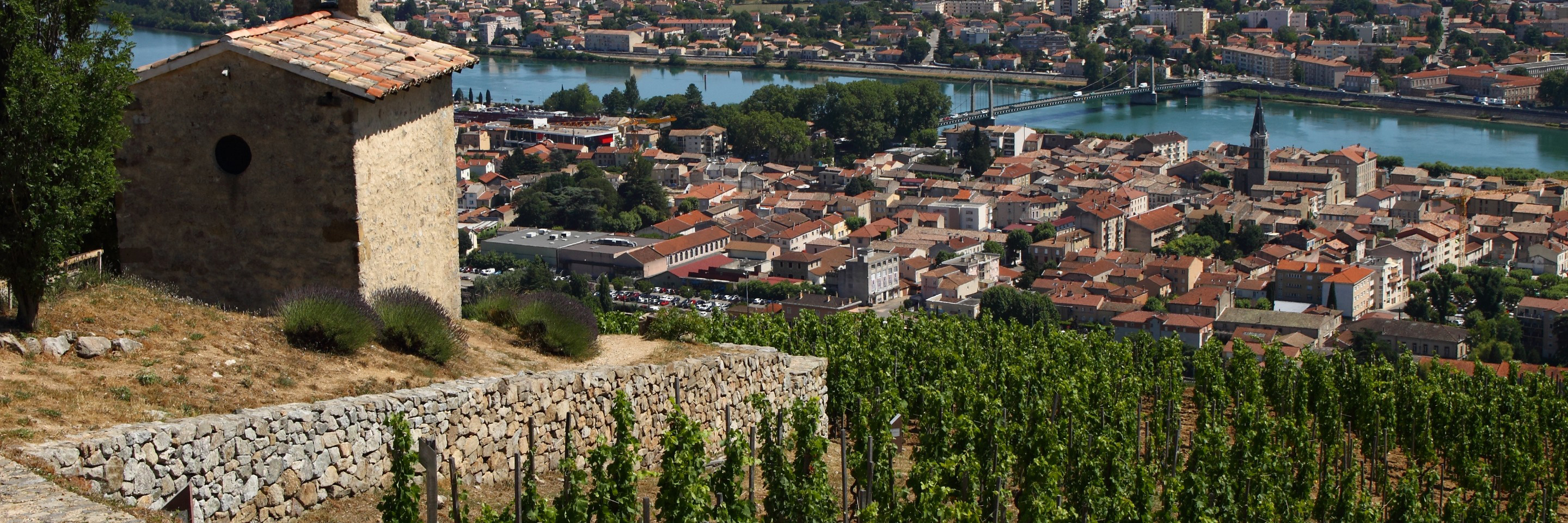 Burgundy & Provence for Wine Lovers (Southbound)
