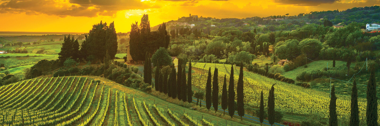 Gourmet Tuscany