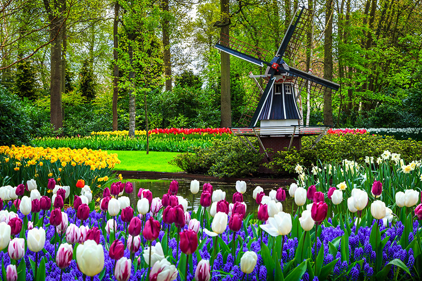 Garden and Nature River Cruises to Holland and Belgium