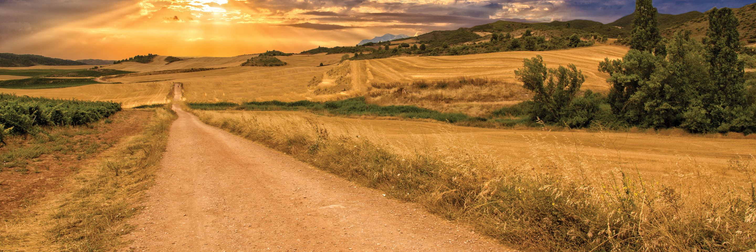 The Camino, a Walking Journey for the Soul